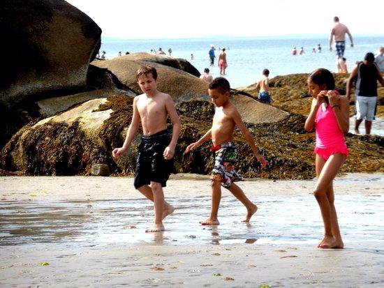 Wingaersheek Beach: Great beach for kids