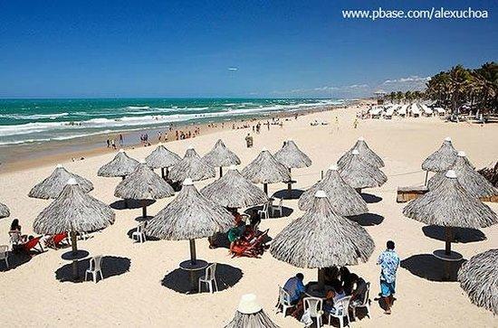 Beach of the Future : Outra vista da disposição das barracas