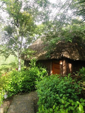 Gaia Riverlodge : Outside of cabana