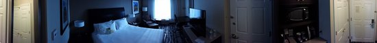 Hilton Garden Inn Chicago Downtown/Magnificent Mile : Single King room