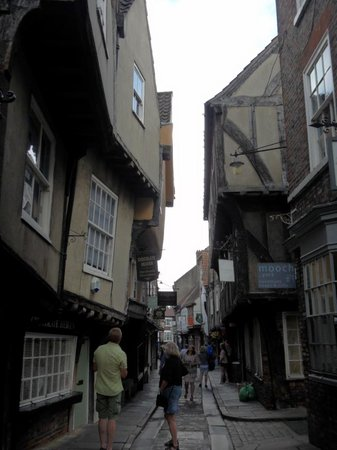 Shambles: Hard to believe it's real!