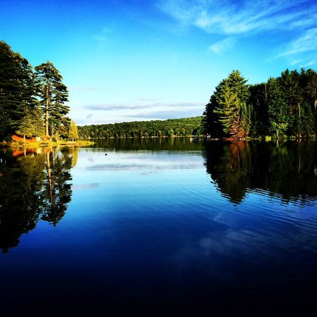 Safe Haven Cottage Resort : A beautiful view on Beech lake