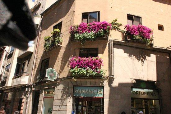 Calle Real de Segovia: Calle Real