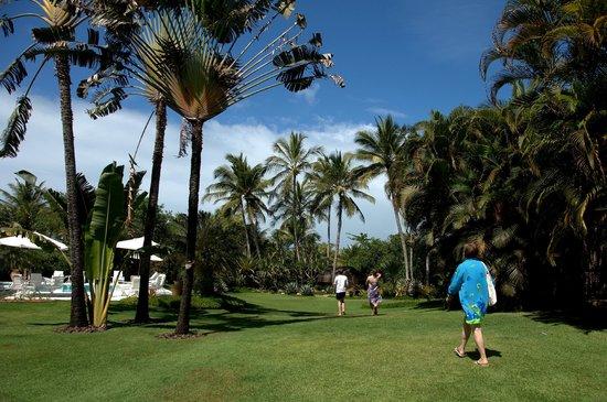 Villas de Trancoso Hotel: hotel grounds