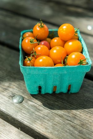 Ithaca Farmers Market: super sweet cherry tomatoes