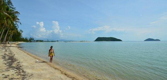 Baan Manali Resort : Hotelstrand