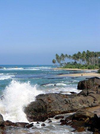 Jetwing Lighthouse: インド洋を眺める