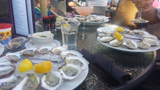 Oyster Company Raw Bar & Grill : 3 of the 6 dozen oysters