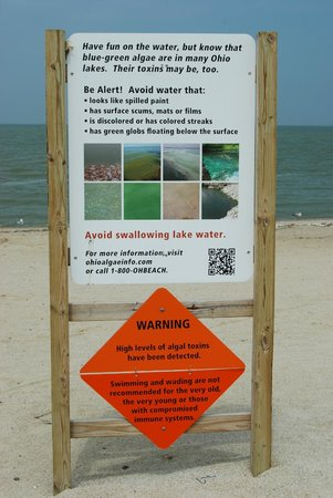 Maumee Bay State Park: WARNING!