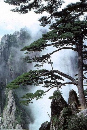 Huangshan, Çin: Three