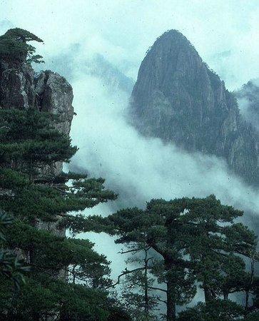 Mt. Huangshan (Yellow Mountain): Touching the clouds