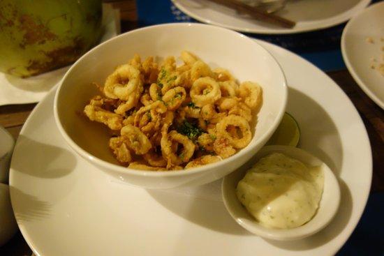 Haven: Calamari