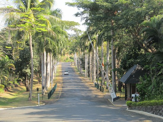 Tanoa International Hotel: Tanoa driveway