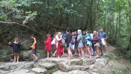Barefoot Tours : Our group preparing to jump in Dinner Falls