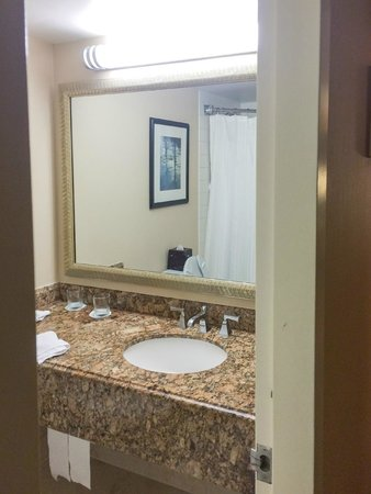Anaheim Marriott Suites: Basin