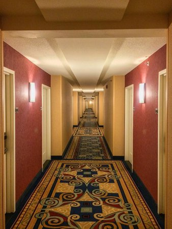 Anaheim Marriott Suites: One of the very long walks to the room