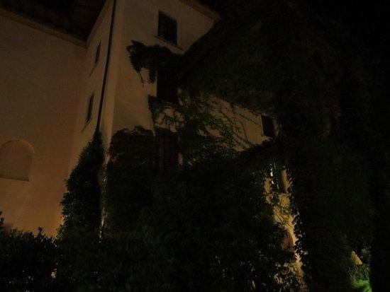 Hotel Villa Gabriele D'Annunzio: Jardines