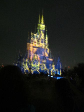 Happily Ever After Fireworks: Wishes