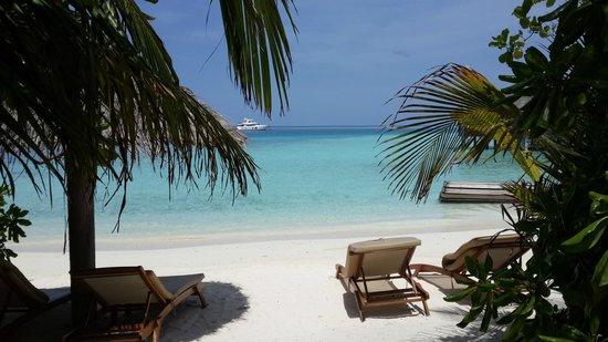 Baros Maldives: gorgeous!