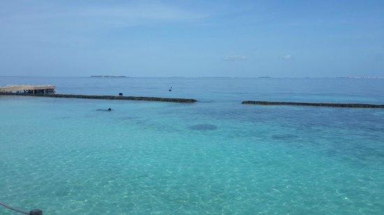 Baros Maldives: reef
