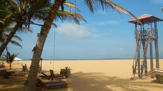 Jetwing Blue: Playa