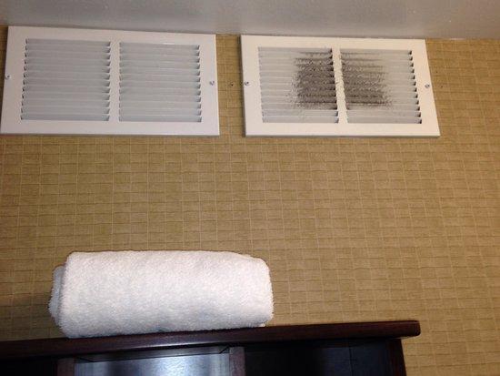 La Quinta Inn & Suites Pittsburgh North: Vent