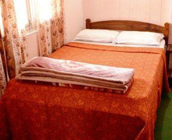 Shree Lal Inn: Double Room