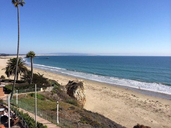 SeaCrest OceanFront Hotel : Fantastic View