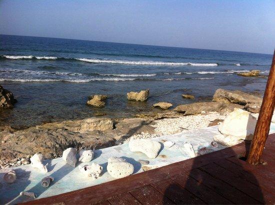 Casa Ixchel : Vista desde la terraza