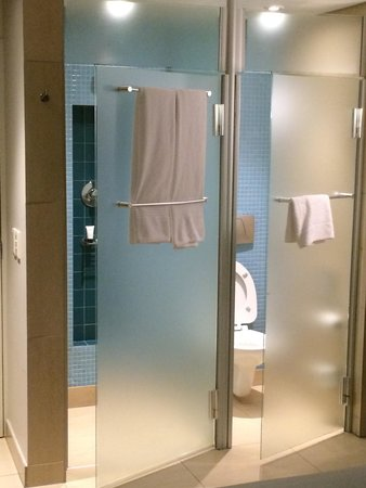 Peermont Metcourt Hotel at Emperors Palace : Two cubicles - shower and loo