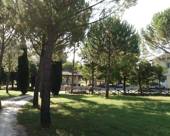 Agriturismo Il Mulino del Vescovo : panorama del parco d'ingresso