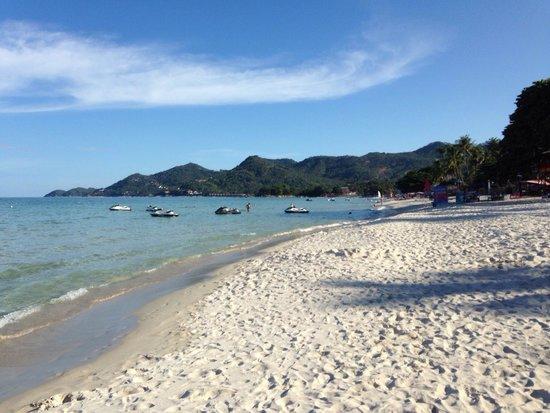 Centara Grand Beach Resort Samui : Spiaggia