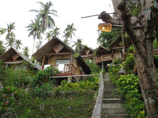 Coco Beach Island Resort : Accommodation houses