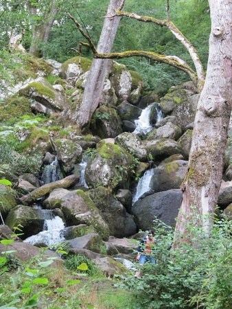 Becky Falls : Waterfall