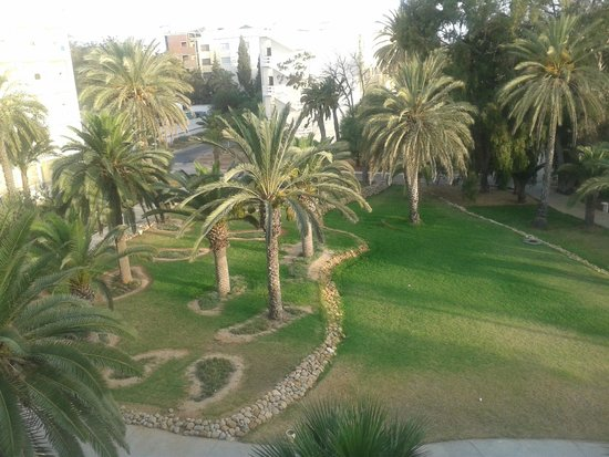 Marhaba Club Hotel: Have anlæg