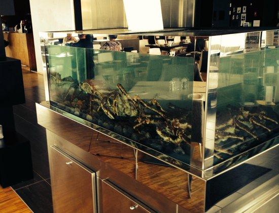 Thon Hotel Kirkenes: Kongekrabbe 'lager'