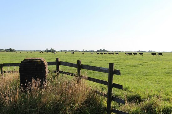Overleekerhoeve: Views around the farmhouse