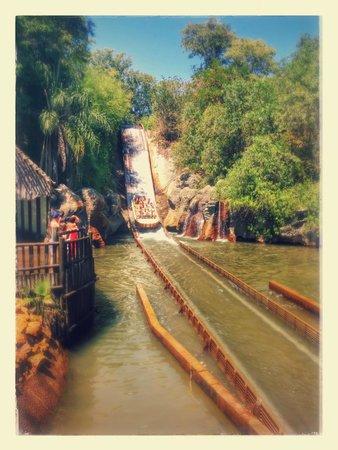 Parque Isla Magica : Diversão
