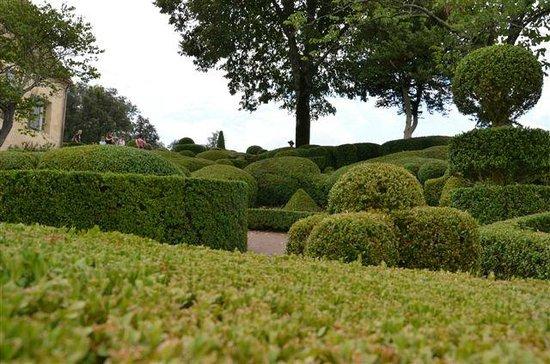 Jardins de marqueyssac picture of les jardins de marqueyssac vezac tripadvisor - Les jardins de marqueyssac ...