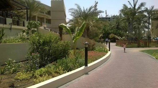 Hilton Al Hamra Beach & Golf Resort : Lawns