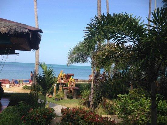 Lipa Bay Resort : outside area