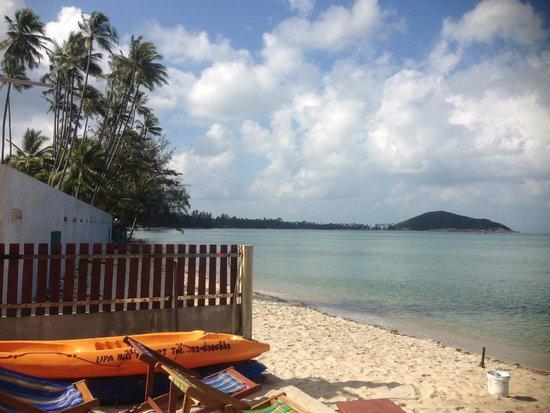 Lipa Bay Resort : sea