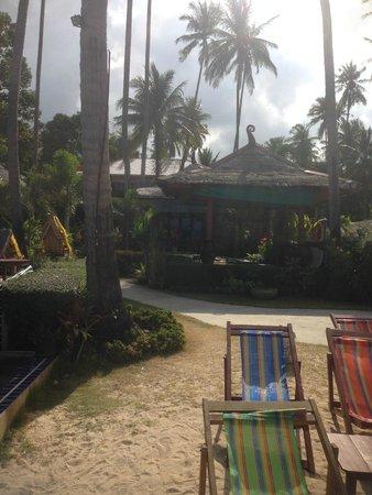 Lipa Bay Resort : view from pool