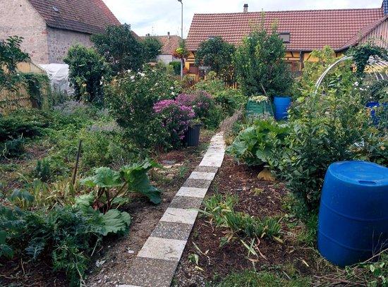 Gerstheim, France : le jardin à Danièle