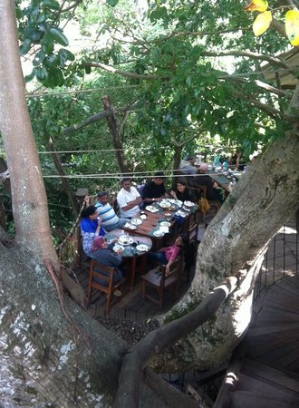Trout Tree : Nice deck to have food