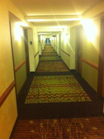 Hilton Garden Inn Houston/The Woodlands: Corridor !