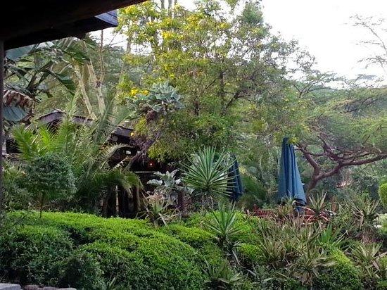 Sarova Lion Hill Game Lodge: Restaurant view