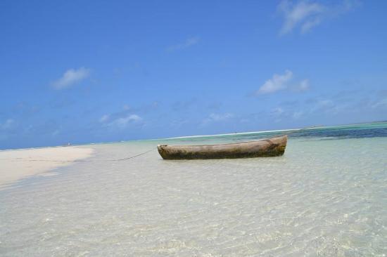 5493ed97c5 PALUMBOREEF BEACH RESORT - Updated 2019 Prices   Reviews (Zanzibar Island