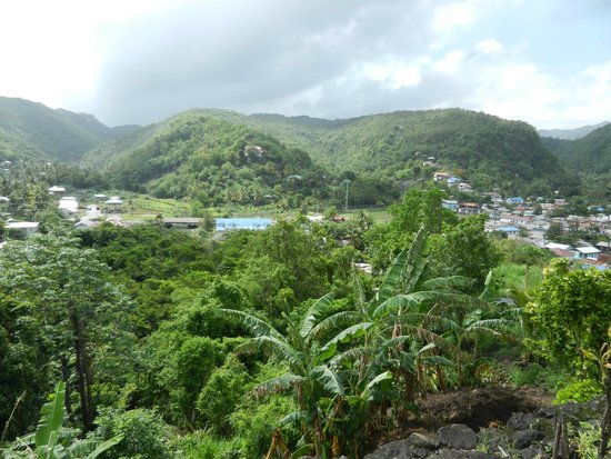 Real St. Lucia Tours : View from the Road