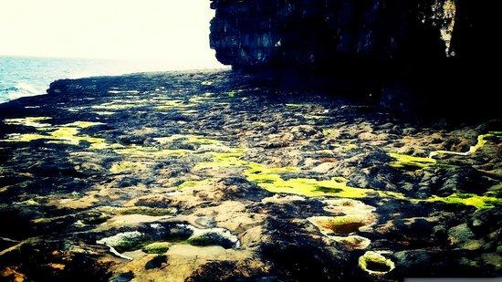 Ard Mhuiris: The Cliffs and The Ocean Views!